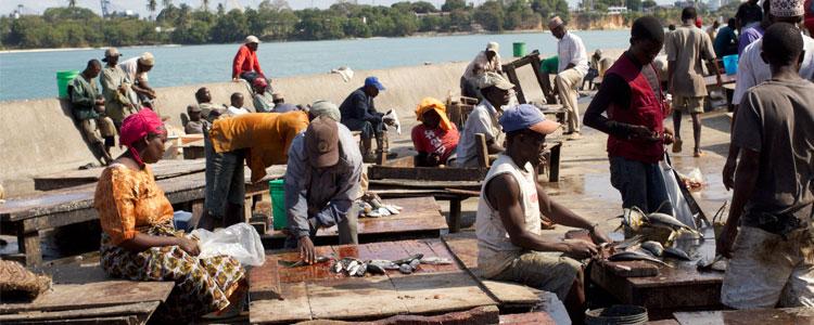 Tanzania 2013 – Dar es Salam